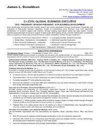 free resume builder software freeware download freelance writer    smlf  middot  resume template  free resume builder software
