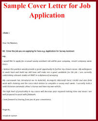 What Is A Job Application Cover Letter Job Application Cover Letter Examples Best Cover Letter 1