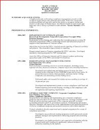Financial Auditor Resume Examples Internationallawjournaloflondon