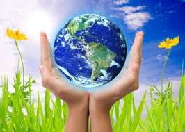 Image result for Environmental Information
