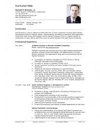 Examples Of A Cv Resume Perfect Resume Format