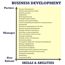 consulting excellence the implications for professional development business development core skills and abilities