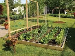 Small Picture Lovable Food Garden Ideas 24 Fantastic Backyard Vegetable Garden