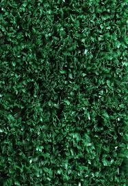 home carpet indoor outdoor four seasons ivy indoor outdoor carpet
