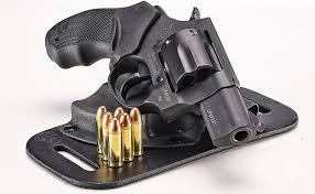 38 Special Light Loads Concealment Confidence Taurus 856 38 Special Revolver