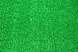 dean indoor outdoor carpet green artificial grass turf area rug 8 x roll