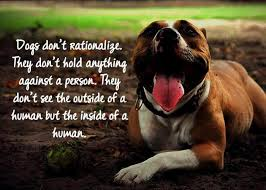 Dog Quotes Inspirational Best 48 LifeHacker Dog Quotes To Turn You Into A Wiser Person Pets World