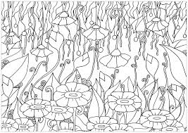Just Flowers Flowers Adult Coloring Pages