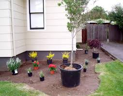 simple landscaping ideas. Simple And Low Maintenance Front Side Yard Landscaping House Design For Small Spaces With Potted Plants Flowers Ideas O