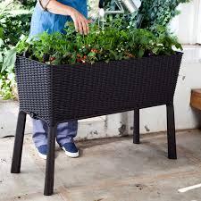 keter easy grow resin big plastic raised planter boxes