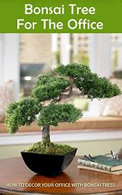 Image Bedroom Bonsai Tree For The Office How To Decor Your Office With Bonsai Tress By Amazoncom Bonsai Tree For The Office How To Decor Your Office With Bonsai