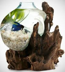 Betta Art Decorative Fish Bowl Molten Sculptural Bowl Fish Bowls and Aquariums 38
