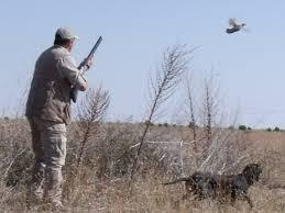 Resultado de imagen de imágenes de caza