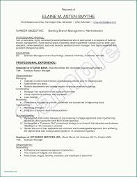 Banking Resume Template Professional Banker Resume Investment