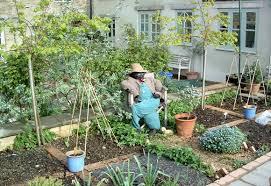 Small Picture Vegetable Garden Design Ideas