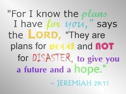 Bible Quotes About Hope Stunning Bible Quotes Wise Sayings Hope Plans