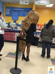 Walmart Customer Service Number People Of Walmart Funny Pictures Of People Shopping At