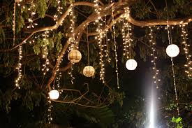 tree with fairy lights - Google Search