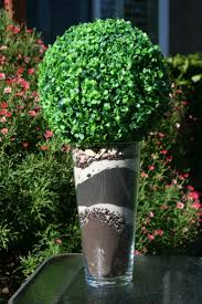 Decorative Boxwood Balls 100 Best Decorative Boxwood And Succulent Balls Images On 38