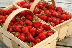 strawberries 20 best fruits veggies herbs to grow in containers