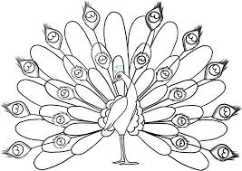 Small Picture Free Printable Peacock Coloring Pages For Kids
