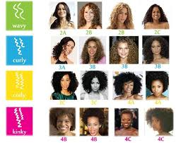 Curl Type Chart In 2019 Curly Hair Types Hair Chart