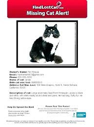 Lost Cat Flyer Luxury Missing Poster Template Lost Cat How To Make An