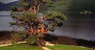 Wedding Venues In Argyll Scotland  The Lodge On Loch Goil  UK Treehouse Scotland