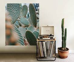 cactus wall mural on cactus wall art nz with cactus wall mural your decal shop nz designer wall art decals