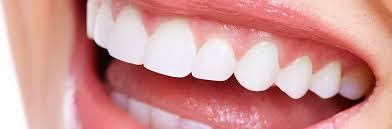 「健康的な歯 フリー」の画像検索結果