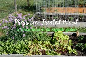 after my last several posts on building a raised bed vegetable garden a few loyal readers wrote to ask if using pressure treated lumber is okay