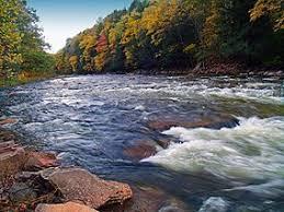 Loyalsock Creek Hatch Chart Loyalsock State Forest Wikipedia