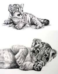 baby tiger drawing tattoo.  Baby Baby Tiger Tattoo Design Inside Drawing I