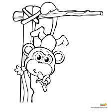 Monkey Coloring Pages A Monkey For