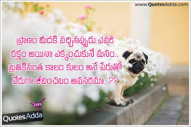 Here Is New Inspirational Telugu Quotations About Caste Feelings Impressive Best Lagics Of Love In Telugu