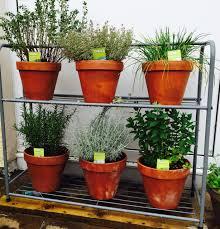 garden rack. Shoe Rack Herb Garden