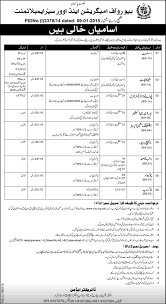 jobs in bureau of immigration and overseas employment