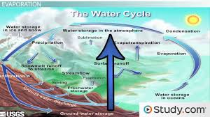 the water cycle precipitation condensation and evaporation the water cycle precipitation condensation and evaporation video lesson transcript com