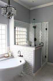 Master Bathroom Remodeling Interior