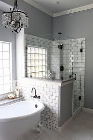 Master Bathroom Remodeling Interior