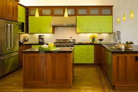 Terrific Kitchen Decoration With Light Green Kitchen Cabinet : Fancy L  Shape Kitchen Design Ideas With ...