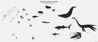 dota 2 fanart tidehunter chart by nullf mmorpg photo mmosite com