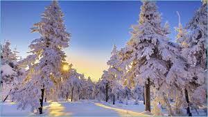 Free Winter Sun Wallpapers Winter ...