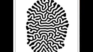 Labyrinth Patterns Simple Design Inspiration