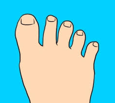 7 Types Of Toes And The Secrets They Reveal About Your