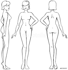 female body outline template woman body front back and side view in outline wall sticker wall