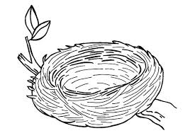 pencil coloring sheet. Fine Coloring Coloring Pages Birds Nest Bird Picture Of Pencil Colouring Case Empty Sheet For Pencil Coloring Sheet