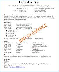 Best Professional Cv Format Best Written Curriculum Vitae Cv Example Studentjob Uk