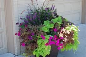 Garden Design with colorful planter love it! Garden Ideas Pinterest Pots  with Mediterranean Garden Design