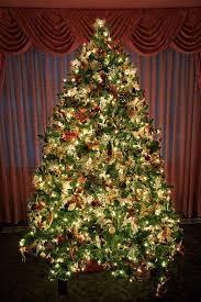 beautiful-christmas-tree[3]